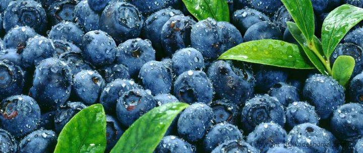 میوه منجمد